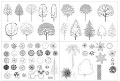 Autocad Tree Collection in architect tree drawing collection - ClipartXtras Landscape Drawings, Architecture Drawings, Landscape Architecture, Landscape Design, Garden Design, Autocad Trees, Section Drawing, Tree Plan, Tree Sketches