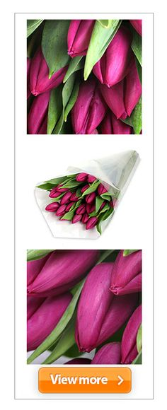 #Purple was once a pleasure reserved for royalty, but you can make a #magenta monarch of your most inspiring playmate with this rather risqué wrap of #plum-tinted #petals. #tulips