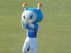 Sein Name ist Furimaru. Er ist das Maskottchen des Yokohama FC. フリ丸  22.03.2014