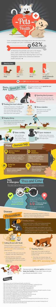 Cool infographic on the healing power of pets