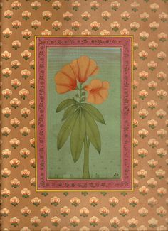 Mughal Paintings, Persian Miniatures, Rajasthani art and other fine Indian paintings for sale at the best value and selection. Pichwai Paintings, Mughal Paintings, Botanical Drawings, Botanical Art, Arabesque, Mughal Miniature Paintings, Indian Traditional Paintings, Indian Folk Art, Flower Art