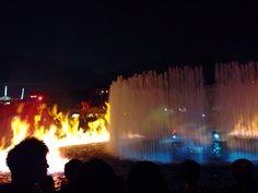 2014.01.04 Ocean Park 7:00pm Ocean Park