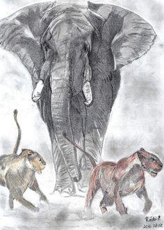 Ceruzarajz. Elephant, Animals, Animales, Animaux, Elephants, Animal, Animais
