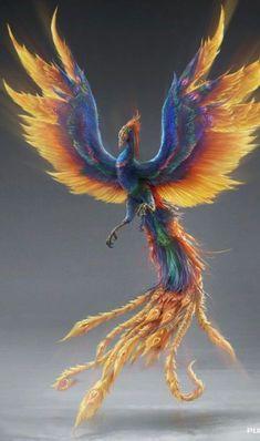 Phoenix Artwork, Phoenix Drawing, Phoenix Images, Tribal Phoenix Tattoo, Small Phoenix Tattoos, Phoenix Tattoo Design, Mythical Creatures Art, Fantasy Creatures, Planet Tattoo