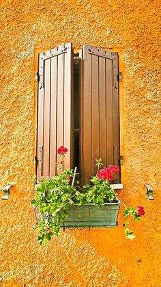 Window in Santarcangelo, Italy. What is it about Italian windows that makes them so beautiful?