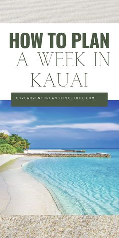 When you think of Kauai, do envision white sandy beaches and lush tropical flowers. Here is a list of the top 5 things to do while in Kauai. Hawaii Honeymoon, Kauai Hawaii, Hawaii Vacation, Dream Vacations, Holiday Destinations, Travel Destinations, Palawan Island, Napali Coast, Hawaii Travel Guide