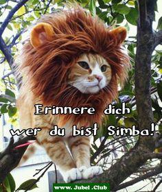 Erinnere dich wer du bist Simba!