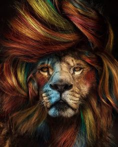 The Wonderful World Of Fantasy And Feeling Of The Artist Marcel Van Luit Lion Photography, Abstract Photography, Amazing Photography, Photography Training, Eagle Wallpaper, Lion Wallpaper, Wallpaper Space, World Of Fantasy, Fantasy Art