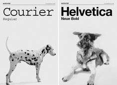 Dogs as Fonts by Grafisches Büro