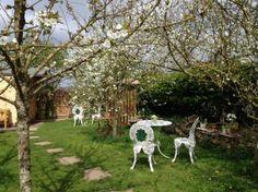 Spring blossom in the Secret Garden - Picture of Old Brickyard Tea ...