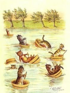 Cats in tubs