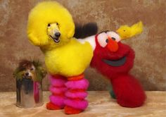 poodle dyed to look  like sesame streeet | Dogs Outlandishly Dyed and Groomed to Look Like Fictional Characters ...