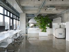 Again with contrasting finishes... the use of polished concrete against the matte white paint works well; the exposed concrete and services in the ceiling also provide a good contrast between between the more clinical style of the work areas.