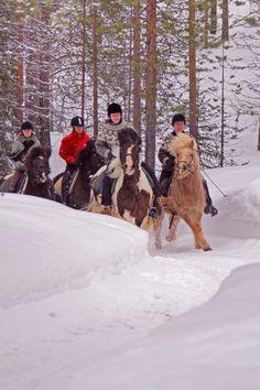 Winter riding in Kuusamo, Finnish Lapland