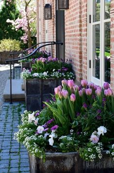 Stunning tulips and pansies in a row of raised beds up against a wall #flowers #tulips #spring