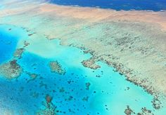 Dive the Great Barrier Reef, Australia (UNESCO site) - TripBucket