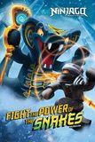Ninjago Lego Posters