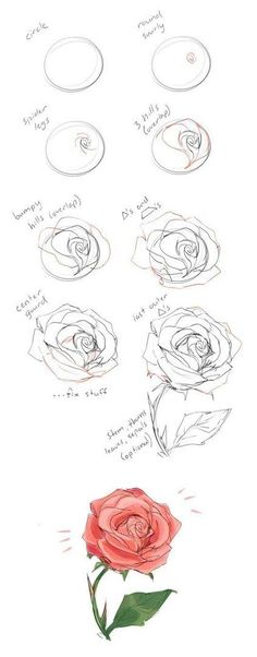 37 Trendy flowers drawing illustration rose - New Tutorial and Ideas Drawing Techniques, Drawing Tips, Drawing Sketches, Painting & Drawing, Drawing Ideas, Pencil Drawings, Drawing Drawing, Sketch Ideas, Tattoo Sketches