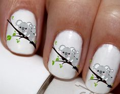 20 pc Koala Bear Nail Art Koala Bears Koala Love Nail Art Nail Decals #cg446na