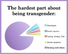 The hardest part about being transgender. for me the dysphoria would be the purple part of the graph. Transgender Ftm, Trans Boys, Trans Man, Trans Gender, Lgbt Rights, Genderqueer, Lgbt Community, My Guy, Equality