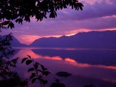 Foto Paars, Sumatra Door: danjamol