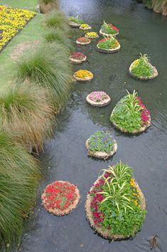 Another form of aquaponics.  Floating islands.