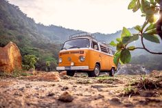 One of many great free stock photos from Pexels. This photo is about volkswagen, wheels, windshield Van Life, Volkswagen, Yellow Vans, Dirt Cheap, Adobe Photoshop Lightroom, John Muir, Healthy Living Tips, Marketing And Advertising, Wallpaper