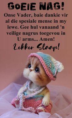 Baie Dankie, Goeie Nag, Goeie More, Afrikaans Quotes, Sleep Tight, Arms, Crochet Hats, Cute, Night Night