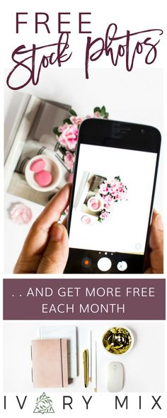 Free stock Photos for bloggers, feminine pink rose blush stock photos, stock photos for online business owners and entrepreneurs