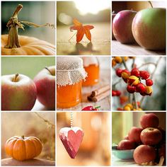 Country Mama Seasons Of His Grace Harvest Time, Fall Harvest, Collages, Autumn Cozy, Early Autumn, Color Collage, Seasons Of The Year, Diy Photo, Fall Season