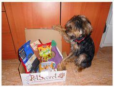 PetSecret Perro Octubre