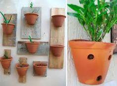 plantas na parede - Pesquisa Google