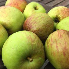 Partageons joyeusementPom Pom Pom…. La recette que je vous propose aujourd'hui est une gelée que je réalise avec des pommes du jardin. Toutes les variétés de pommes sont possibles, je les choisis bien mûres et sans aucun traitement. En effet, c'est la pomme entière qui y passe! Peau, trognon, pépins, tout est utilisé! Cette gelée … … Lire la suite →