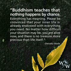 Buddhism teaches that nothing happens by chance.  ...& there is no treasure more precious than life itself.