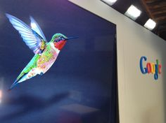 FTQ: What Does Google Hummingbird Mean for Content Marketing?