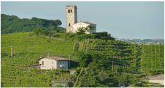 Expo Veneto: Palladio in the hills between Asolo Prosecco and Prosecco Superiore - Events