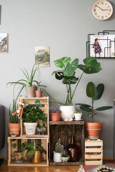 10 idées déco pour mettre son intérieur au vert