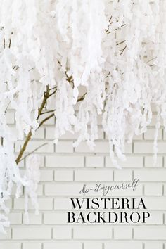 DIY paper wisteria backdrop from a tree branch & crepe paper streamers Diy Backdrop, Backdrops, Flower Crafts, Diy Flowers, Paper Streamers, Crepe Paper Backdrop, Crepe Paper Flowers, Paper Peonies, Diy Papier