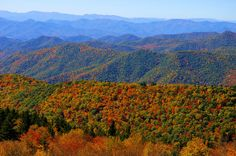 Fall color along the Blue Ridge Parkway in the North Carolina mountains, south of Asheville