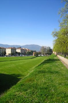 Green city walls in Lucca.