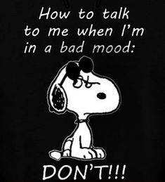 Most Funny Quotes : Snoopy Love, Charlie Brown And Snoopy, Snoopy And Woodstock, Cute Quotes, Great Quotes, Funny Quotes, Inspirational Quotes, Motivational, Funny Memes