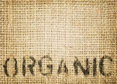 Top 9 Most Important Foods to Buy Organic