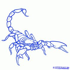 scorpion line drawing - Google Search