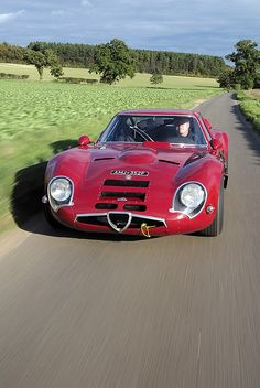 1965 Alfa Romeo TZ2. Maintenance/restoration Of Old/vintage Vehicles: The  Material. Classic Sports CarsClassic ...