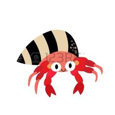 cartoon hermit crab: Hermit Crab animal cartoon character. Isolated on white background. Vector illustration.