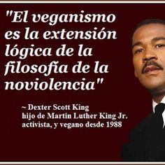 Vuévete #vegan y salva el #planeta