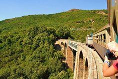 Il #Trenino Verde della #Sardegna - Il treno attraversa un territorio ricco di vegetazione dove la linea ferrata, i ponti, le stazioni, le case cantoniere sembrano far parte da sempre del paesaggio, perfettamente inseriti in un contesto ambientale a volte raggiungibile solo con la ferrovia.