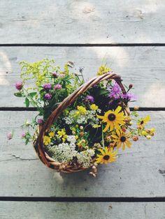 Summer wildflowers collected in Maine. @Kirsten Wehrenberg-Klee Wehrenberg-Klee Rickert