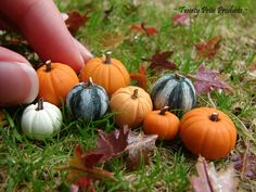 It's only just the beginning of autumn, so here are a few more pumpkins. There's quite a variety too--not just your typical orange pumpk. Polymer Clay Miniatures, Fimo Clay, Polymer Clay Projects, Dollhouse Miniatures, Haunted Dollhouse, Miniature Plants, Miniature Fairy Gardens, Miniature Food, Miniature Dolls