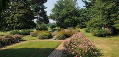 Odessa Delaware Gardens